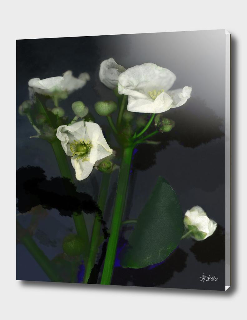 ink on flower