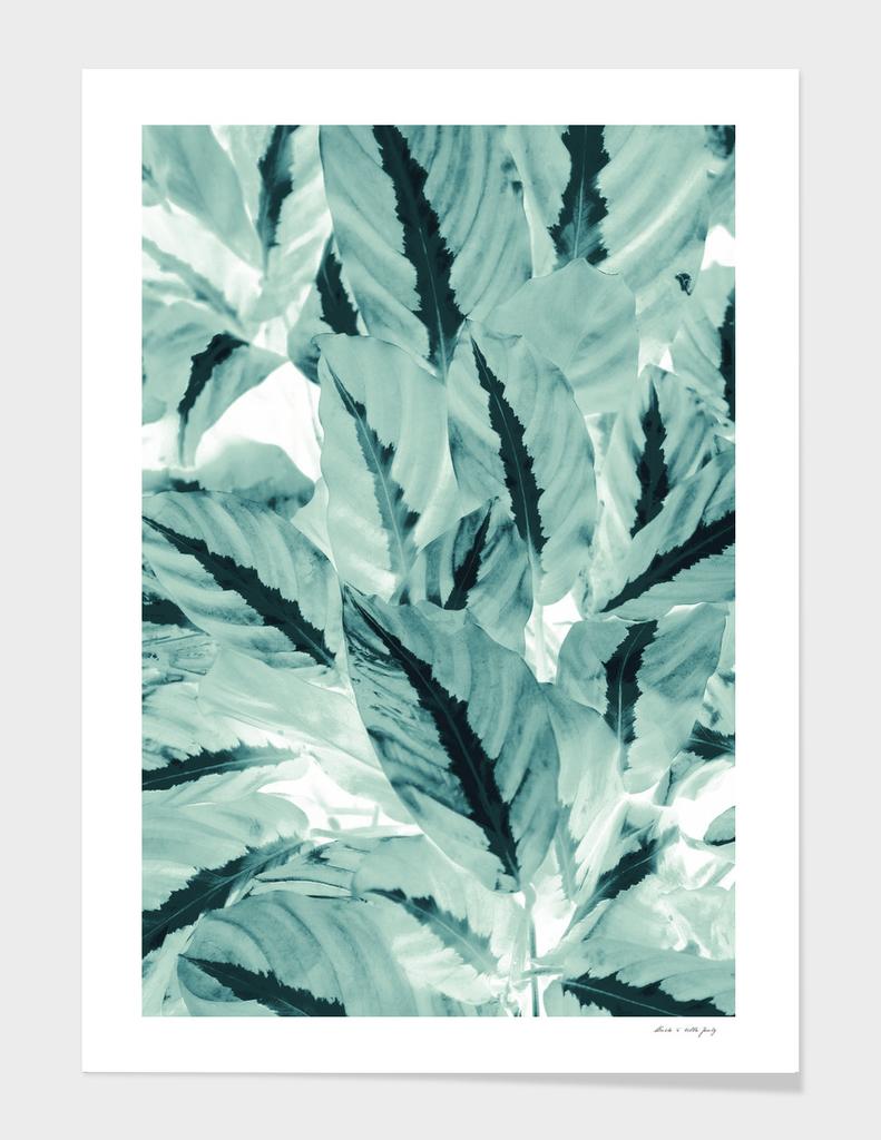 Tropical Jungle Leaves #1 #tropical #decor #art