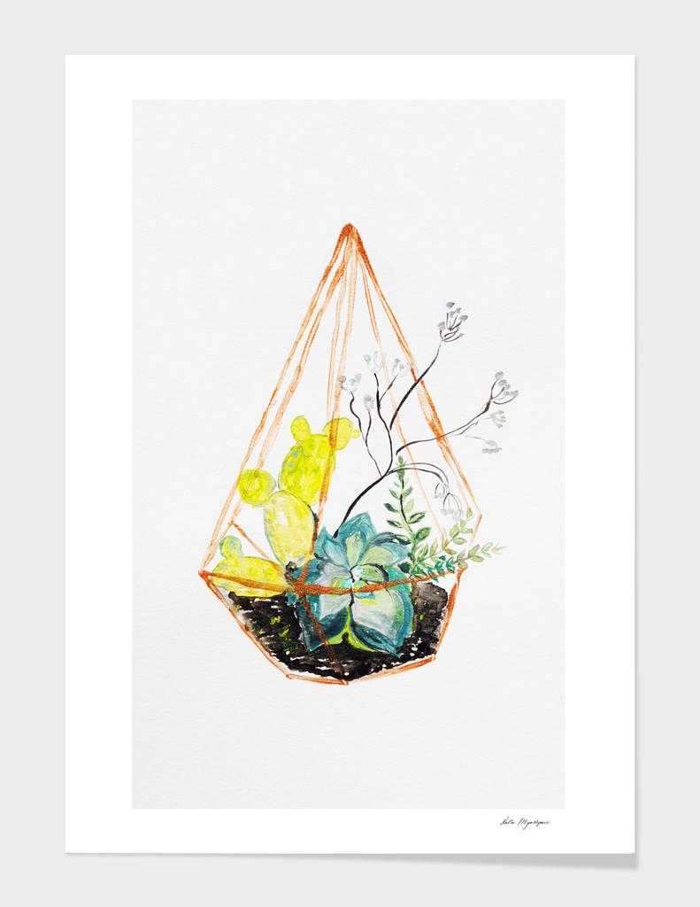 SUCCULENT TERRARIUM Botanical, plants Illustration