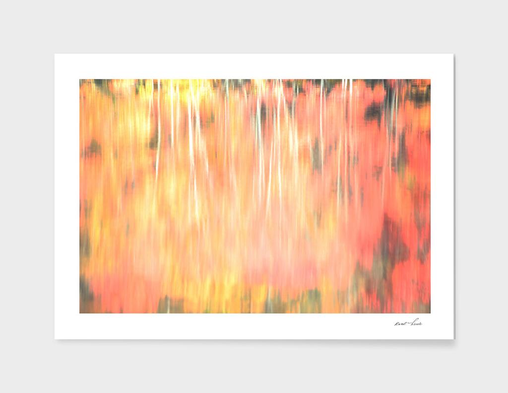 Blur Of Autumn
