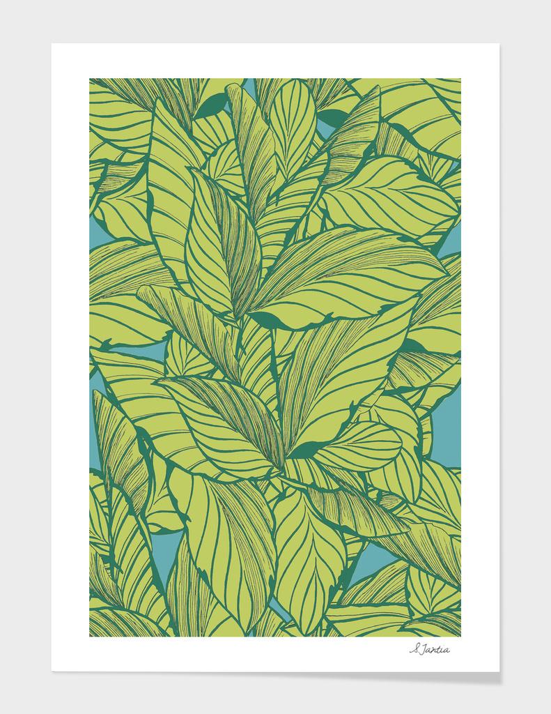 Leafy Jungle
