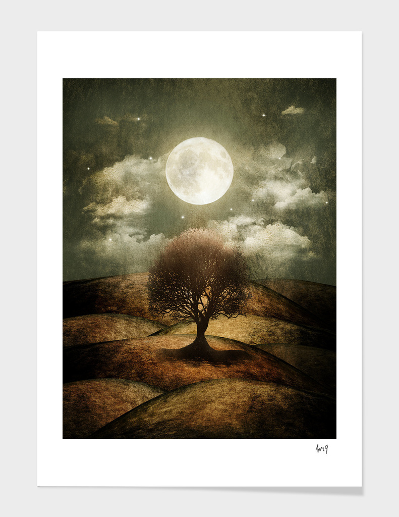 Once upon a time... The lone tree.