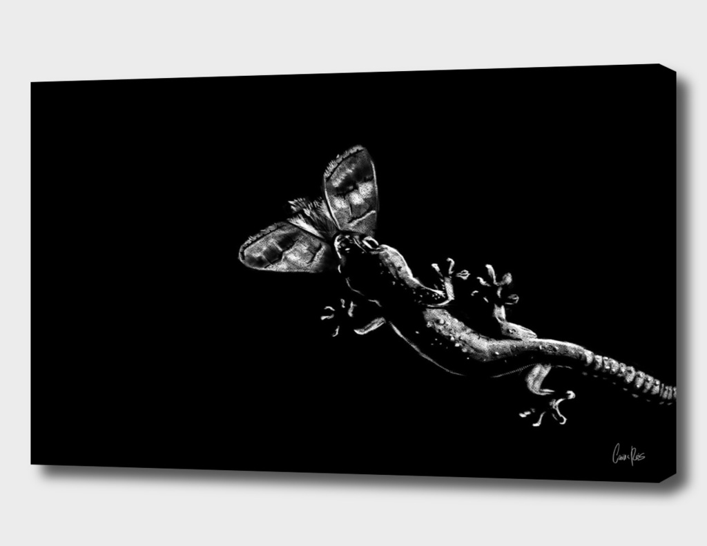 Gecko Pt.2