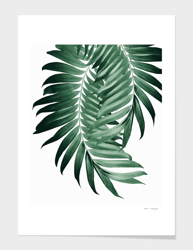 Palm Leaves Tropical Green Vibes 4 Tropical Decor Art Art Print By Anita S Bella S Art Curioos Art zone modern nordic tropical plant leaves poster prints wall art canvas posters artwork tropical palm leaf art canvas posters prints , tropical plam tree photography painting black. curioos