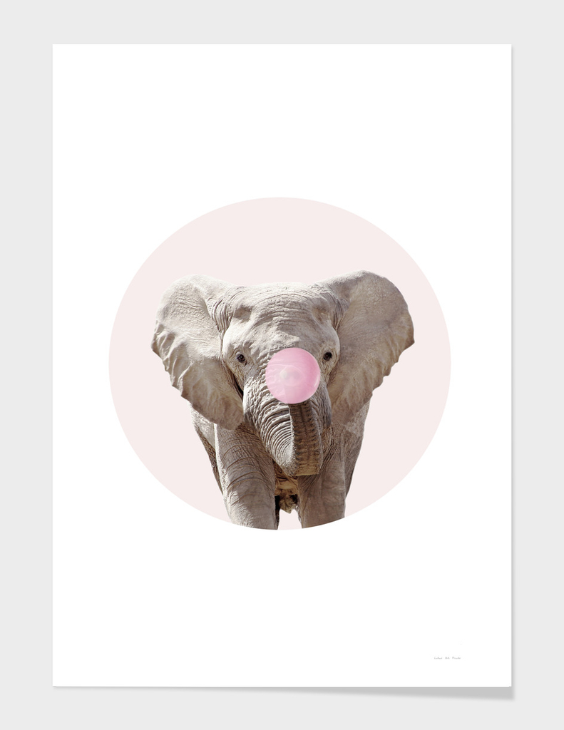 Elephant With Bubble Gum