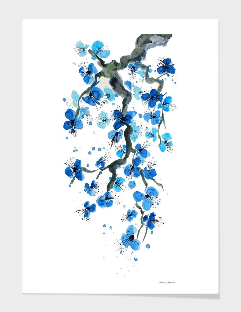Blue Japanese Blossoms