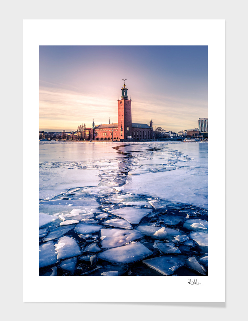 Stockholm City Hall in Winter