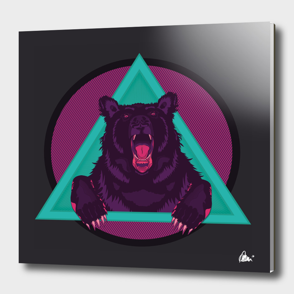 Bear_drawing_FINAL_curioos