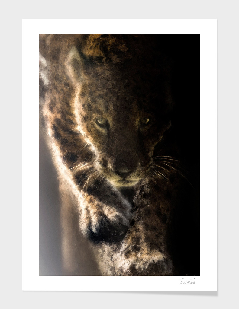 Shadow Jaguar