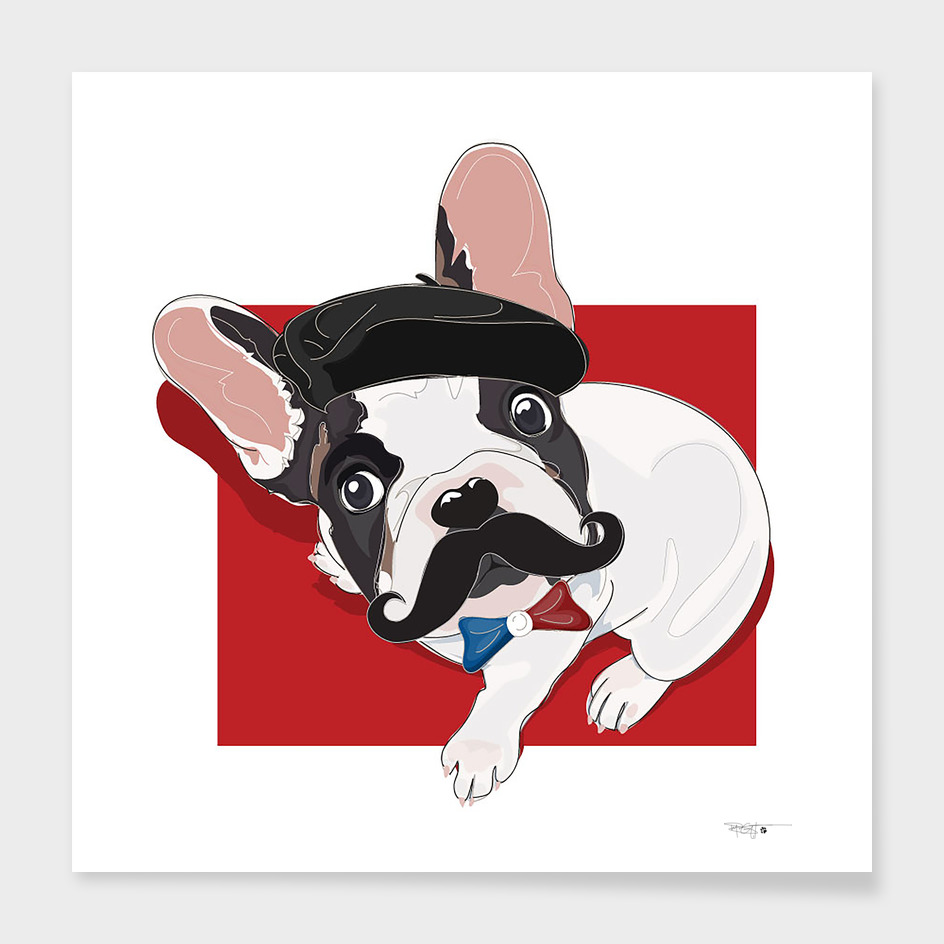 Bow-jour! Frenchie