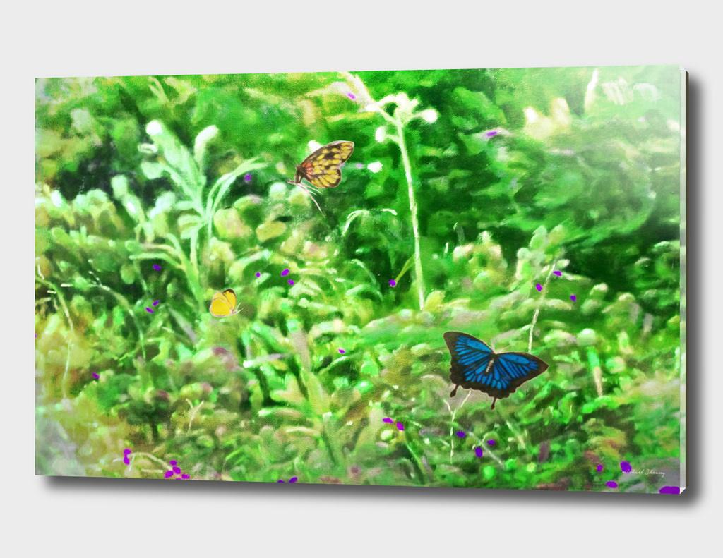 butterfly fantasy #8