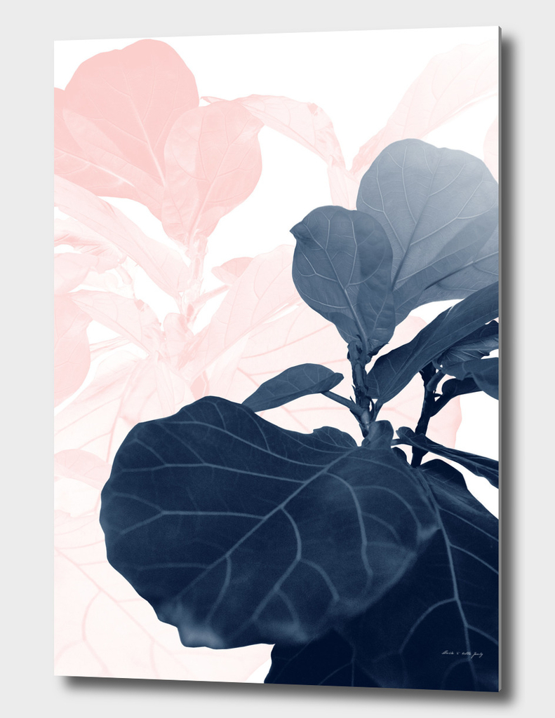 Blush Blue Fiddle Leaf Dream #1 #tropical #decor #art