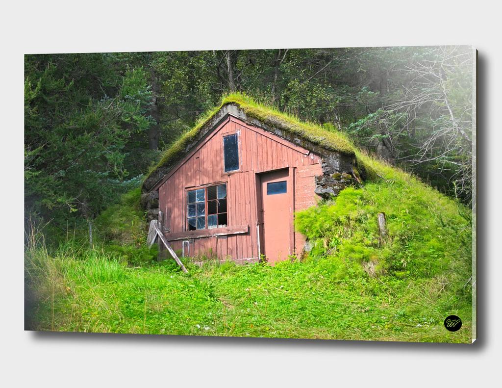 Abandonned House