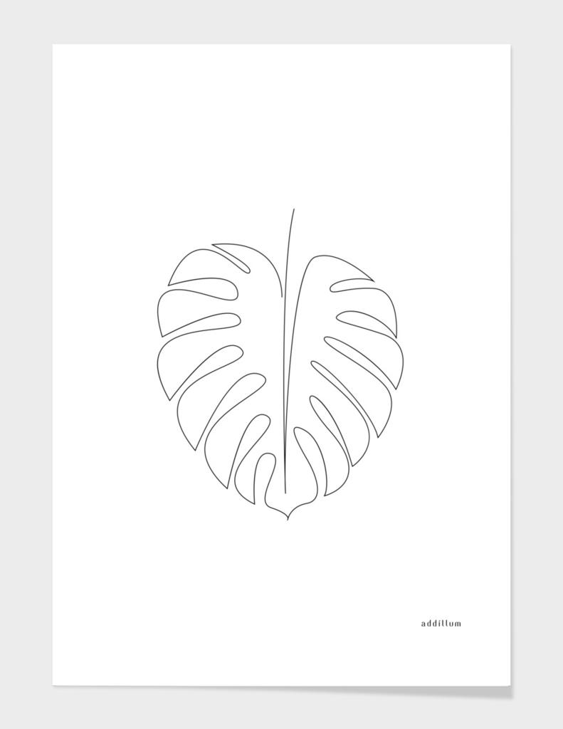 Monstera - single line art