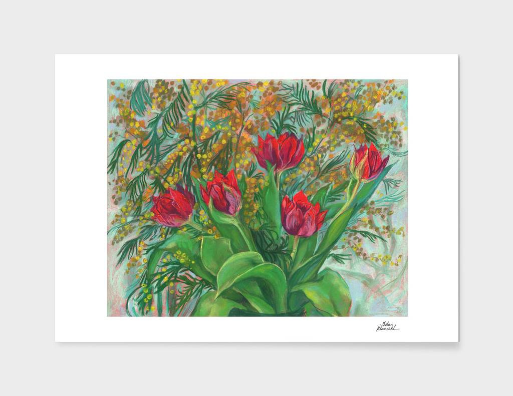 Mimosa and Tulips, Spring Flowers