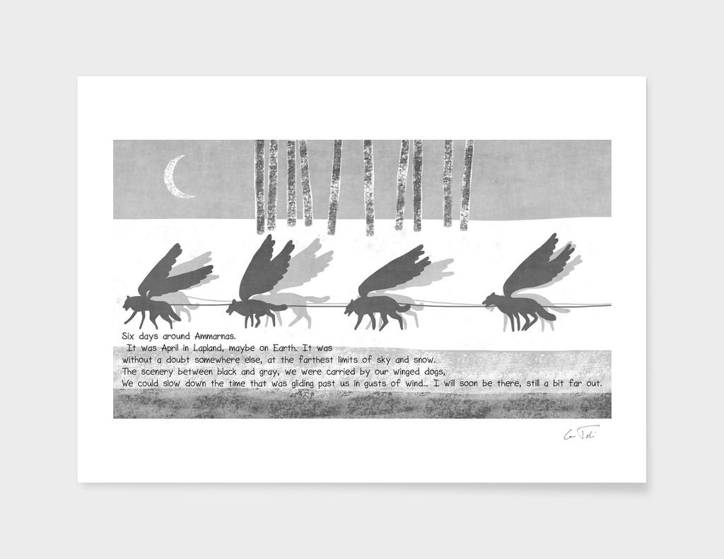 """""""Ammarnas""""- Text E.Tchijakoff - Illustration Toni demuro"""