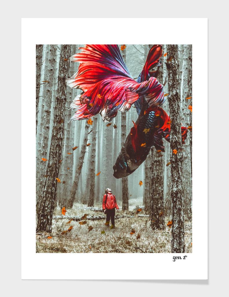 Forest Betta by GEN Z