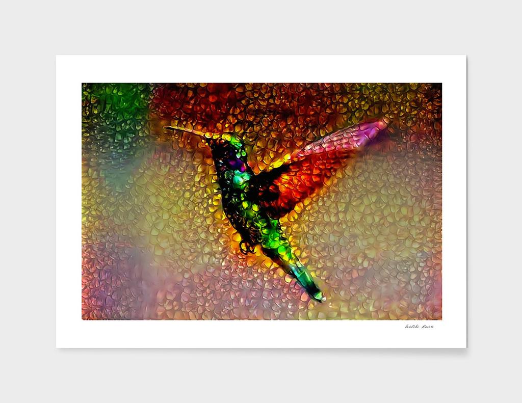 Ornamental Hummingbird