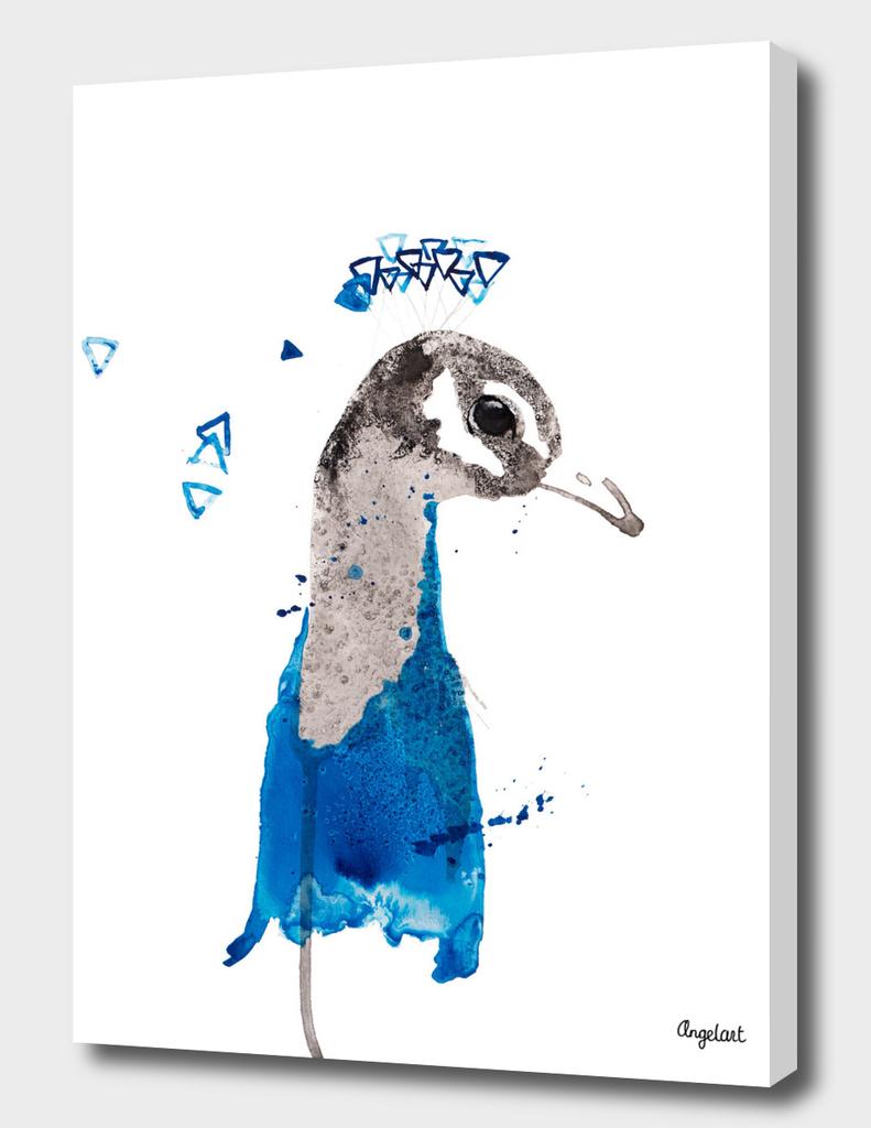 Peacock special bird illustration