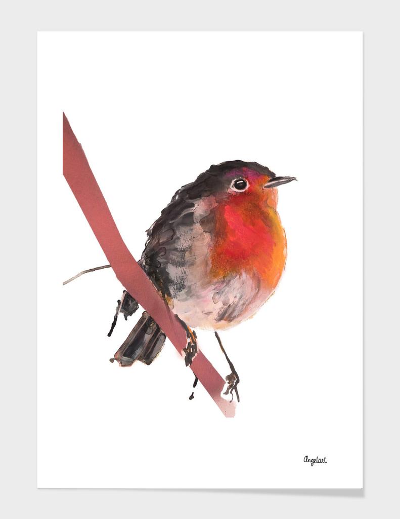 Robin robin special bird illustration
