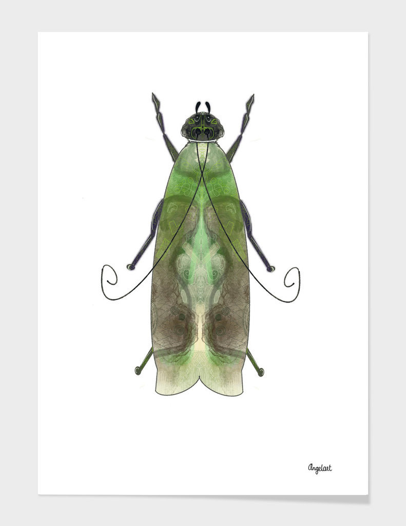 Green moth on white background