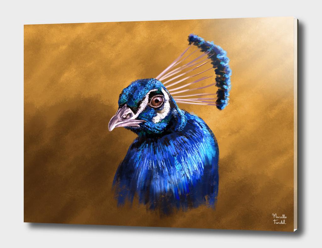 Pavão Azul