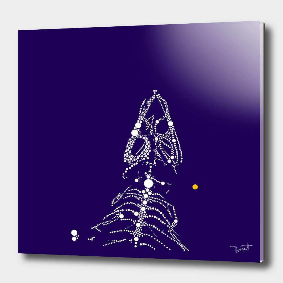 iguana constellation