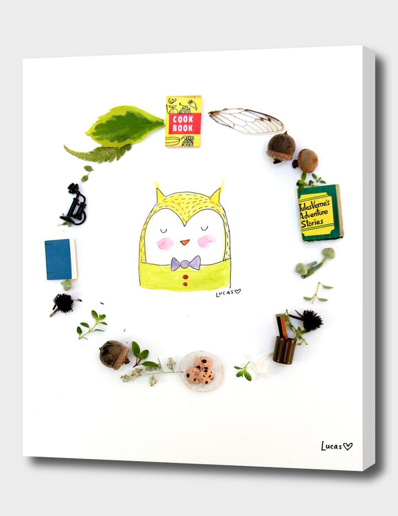 Owlbert the Owl