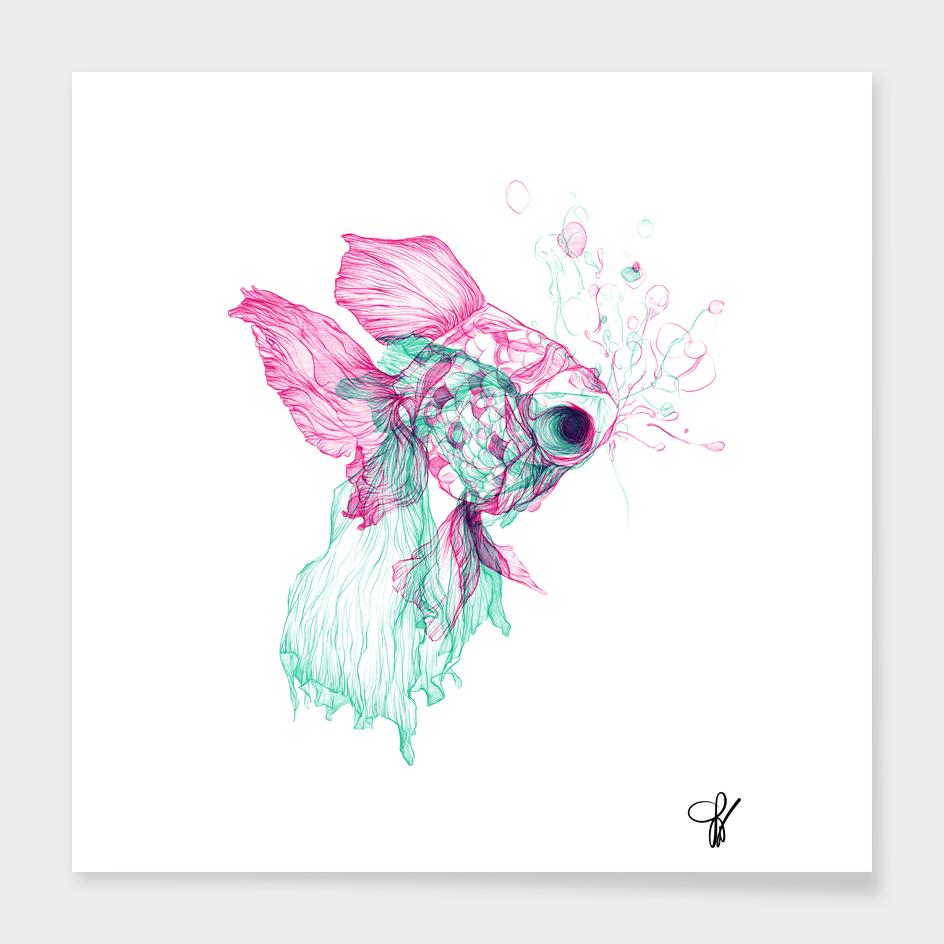 Pisces Baby