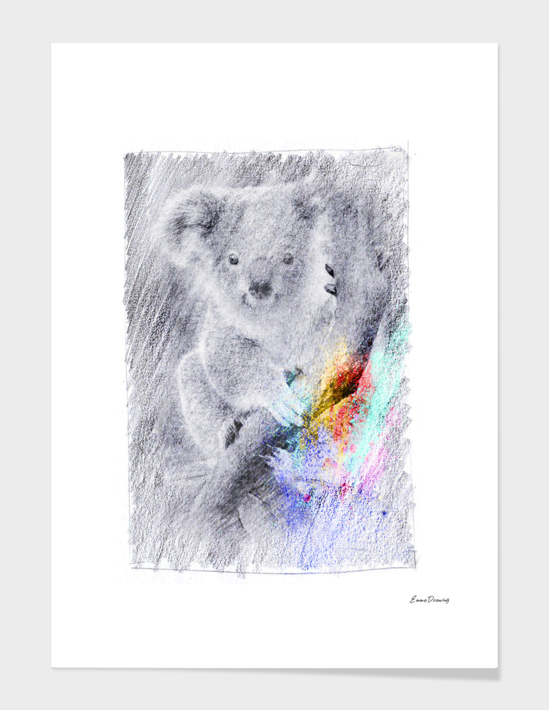 Koala: classic sketch, pastel drawing, colorful