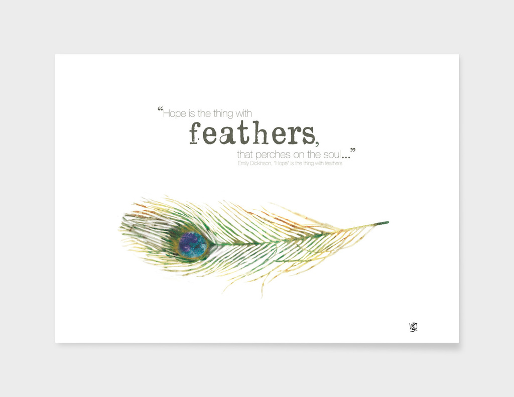 Feather Ilustration