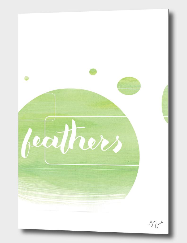 Feathers_brush pen