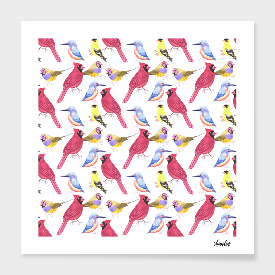 watercolor birds in triad color scheme