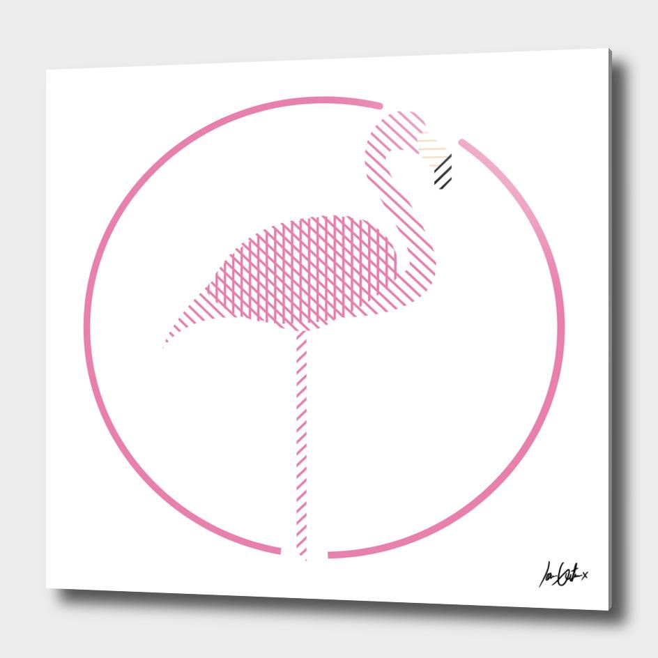 Lines of Flamingos