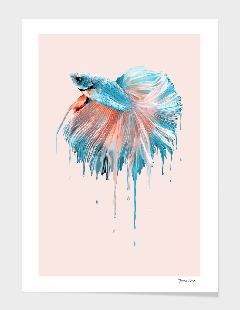 MELTING FISH