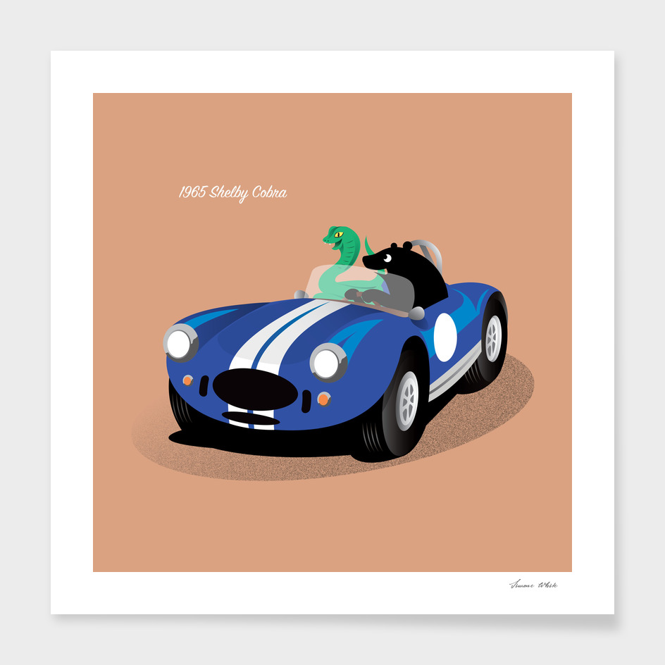 Bear and the Shelby Cobra