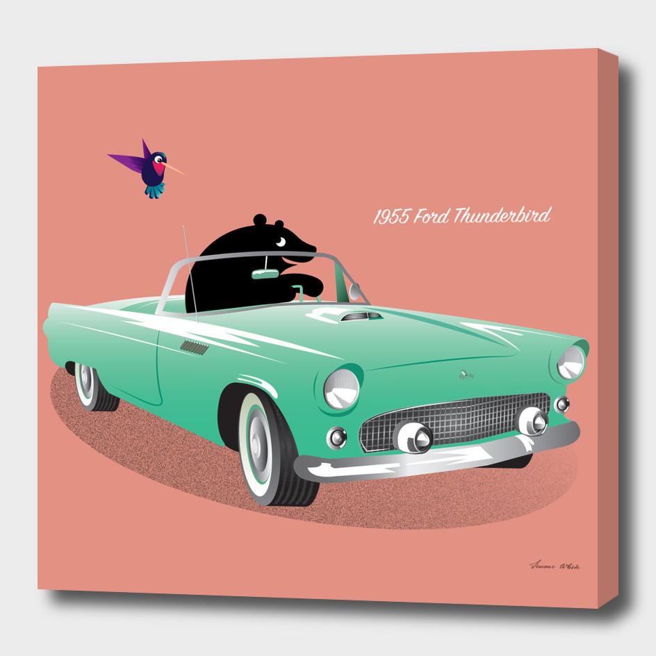 Bear and the Ford Thunderbird