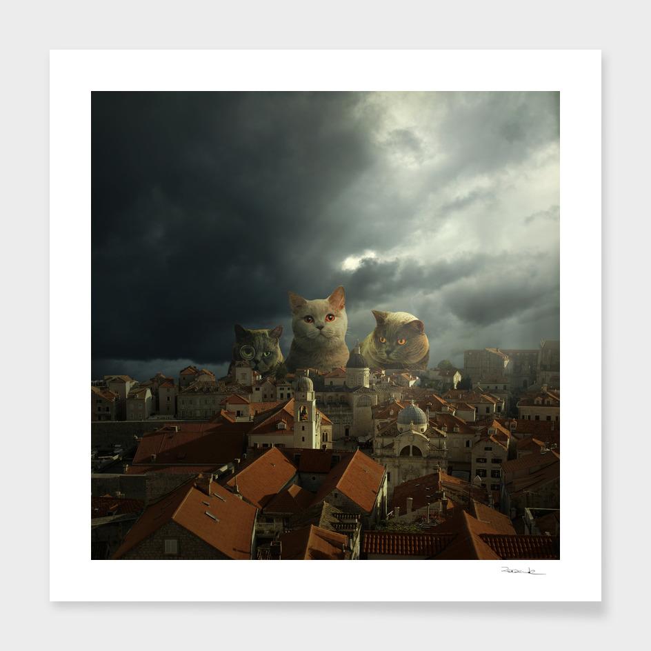 Guardians of Dubrovnik