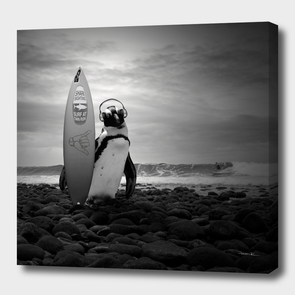 Surfin' penguin