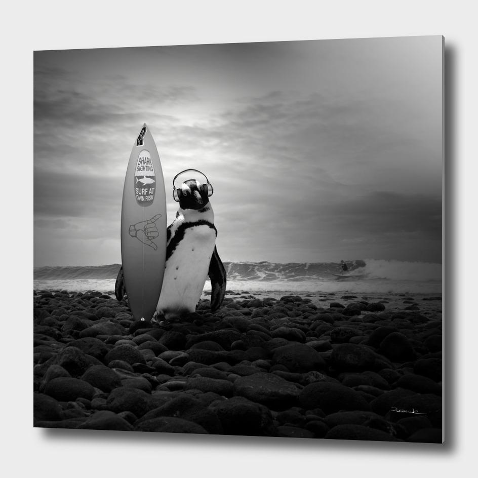 Surfin' penguin