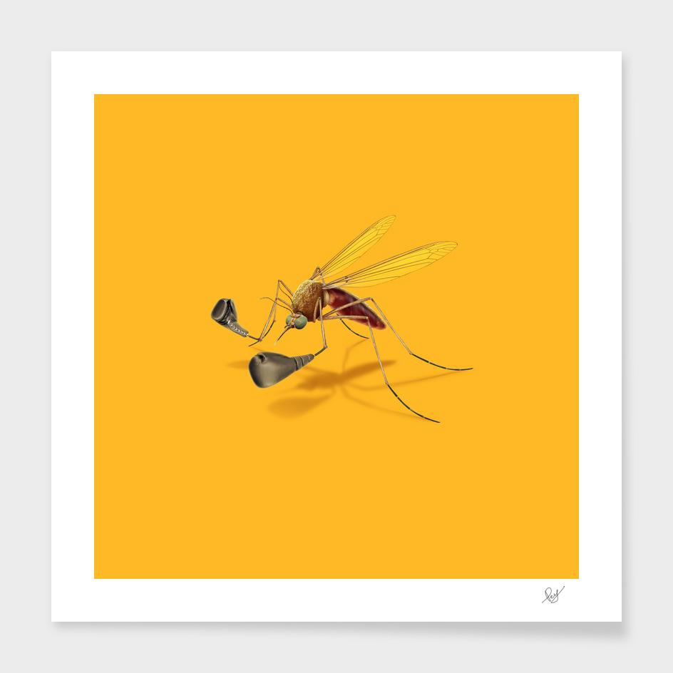 Mosquito Boxing