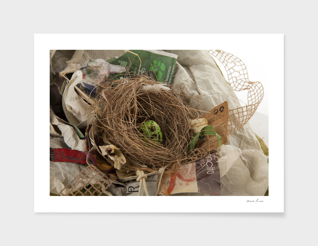 urban.nests.103