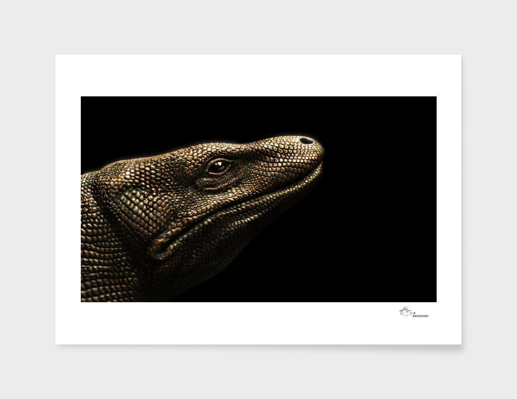 Comodo Dragon sculpture