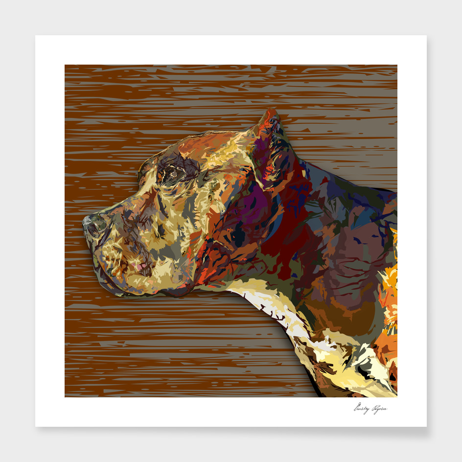 AMERICAN BULLY PORTRAIT