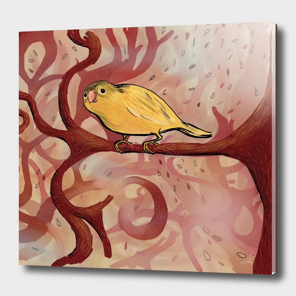 Wonderland Bird