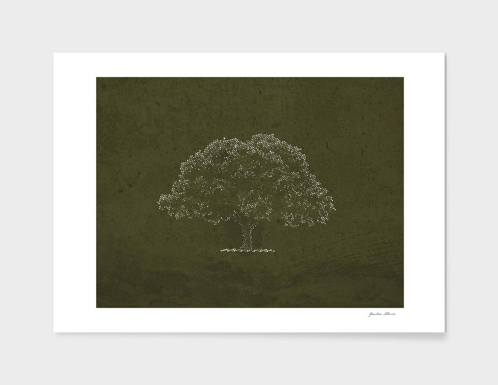 shy tree