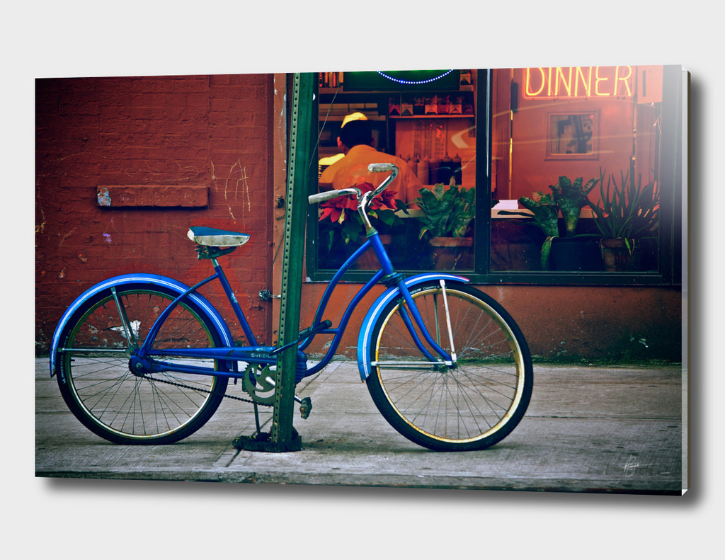 Old Blue Bicycle