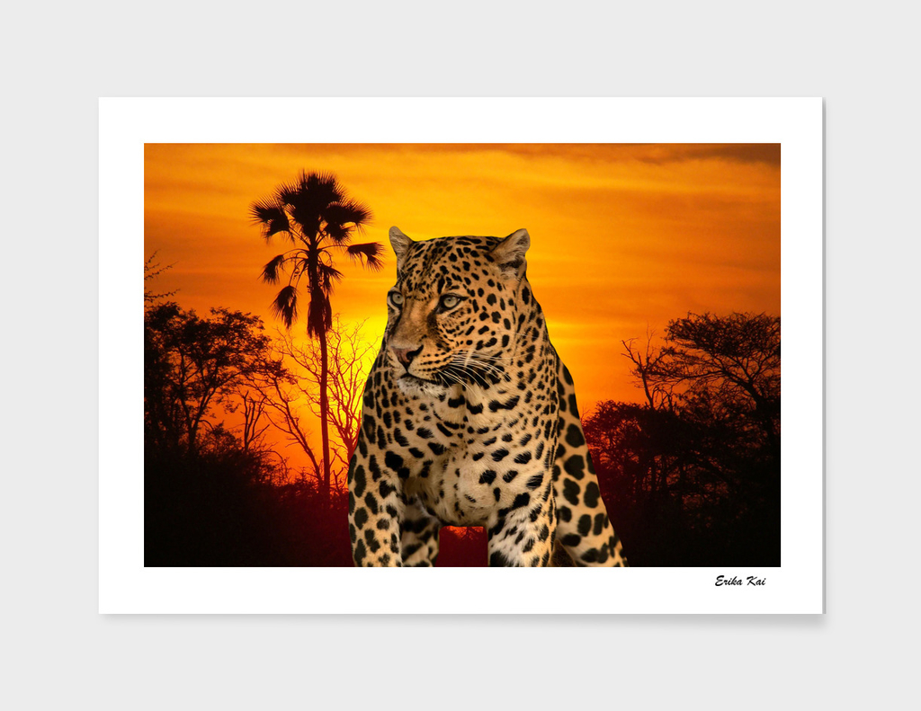 Leopard and Sunset