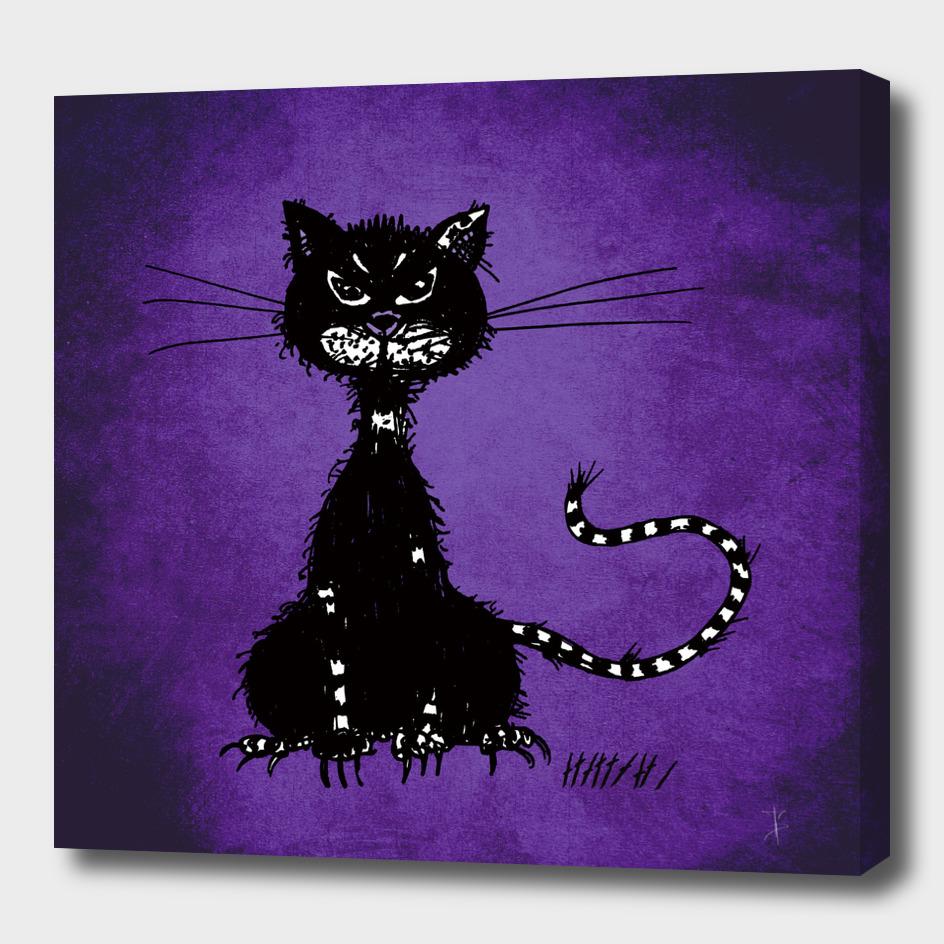 Shaggy Evil Black Cat