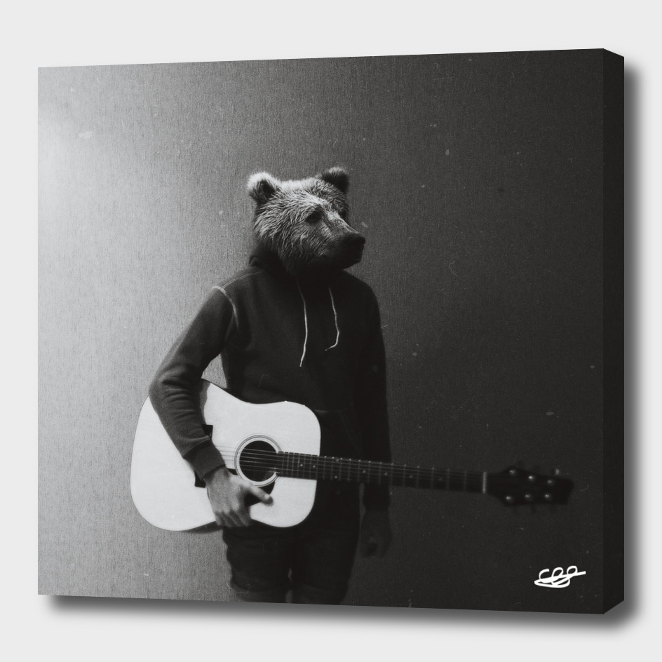 Animals in my room. Bear